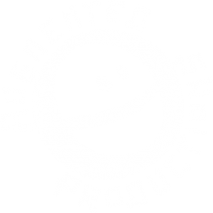 Augmented Productions Logo